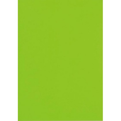 A4 160gsm Bright Board Single Sheet Green